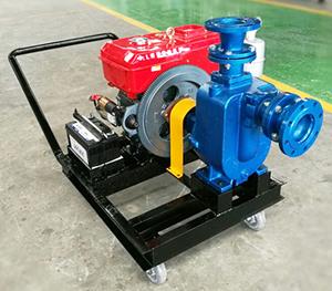 XBC-ZW移动式小型柴油机自吸水泵